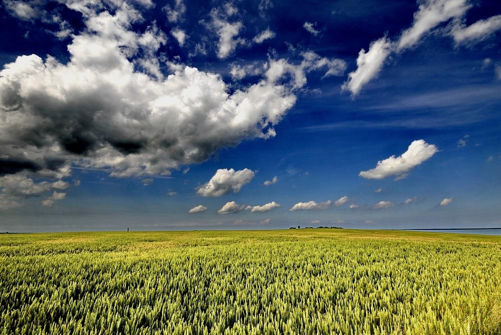 Viel Landschaft.....