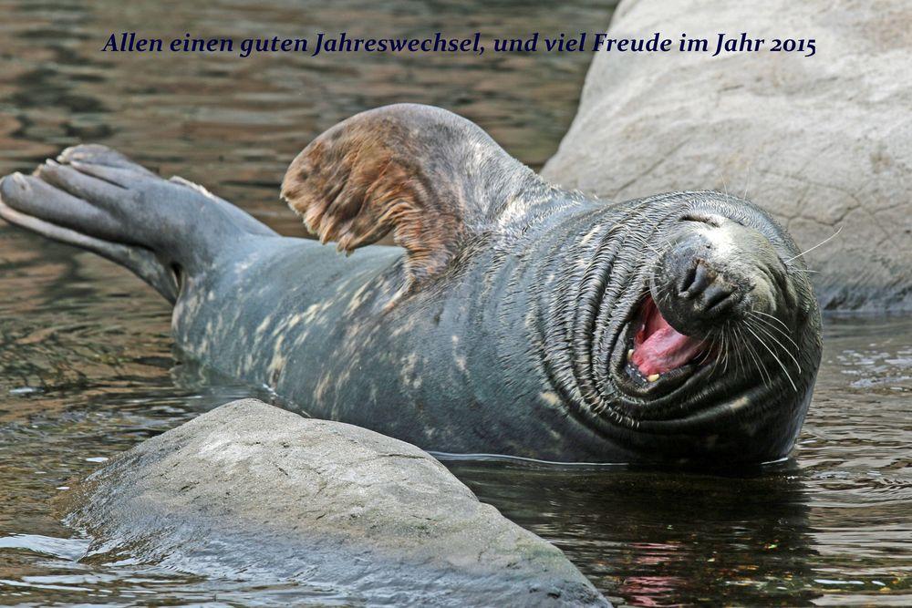 Viel zu lachen...
