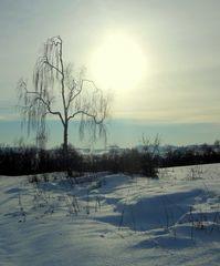 Vielauer Land im Winter
