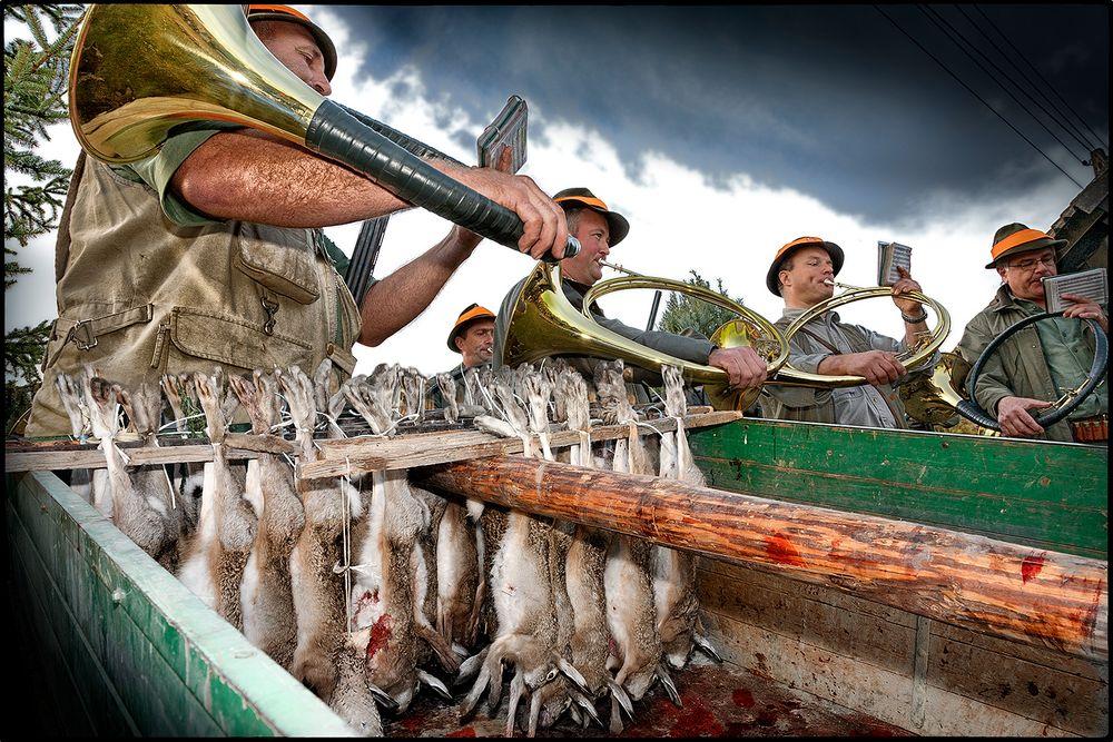 Viele Jäger sind des Hasen Tod .....