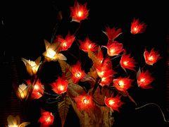 Viele kleine Lichter