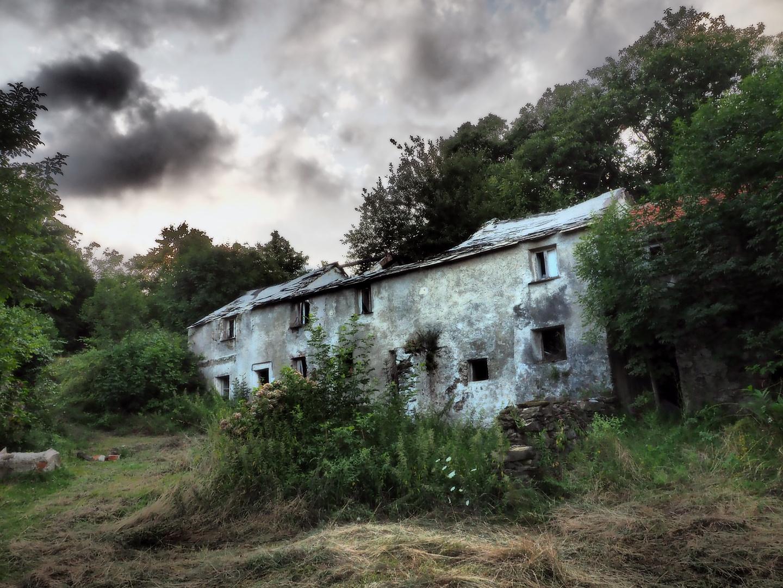 C È Una Casa Nel Bosco vieni vieni c'è una casa nel bosco foto % immagini