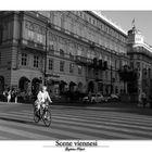 Vienna_16