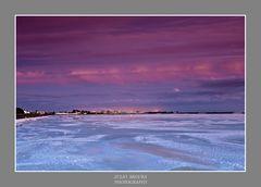 Vientos del Sur Web 2012