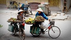 Viet Life IX