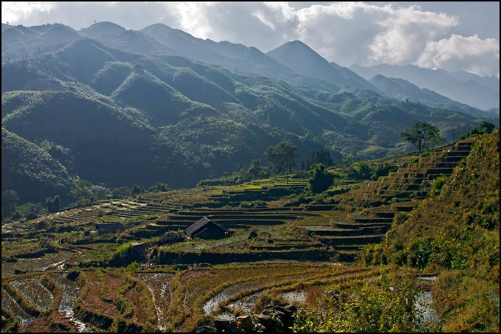 Vietnam- der Norden- Berge & Reisfelder