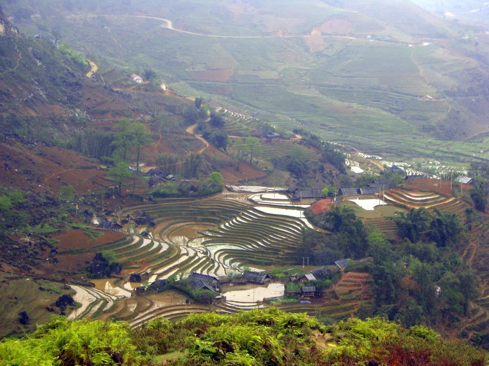 Vietnam : Les rizieres de Sapa