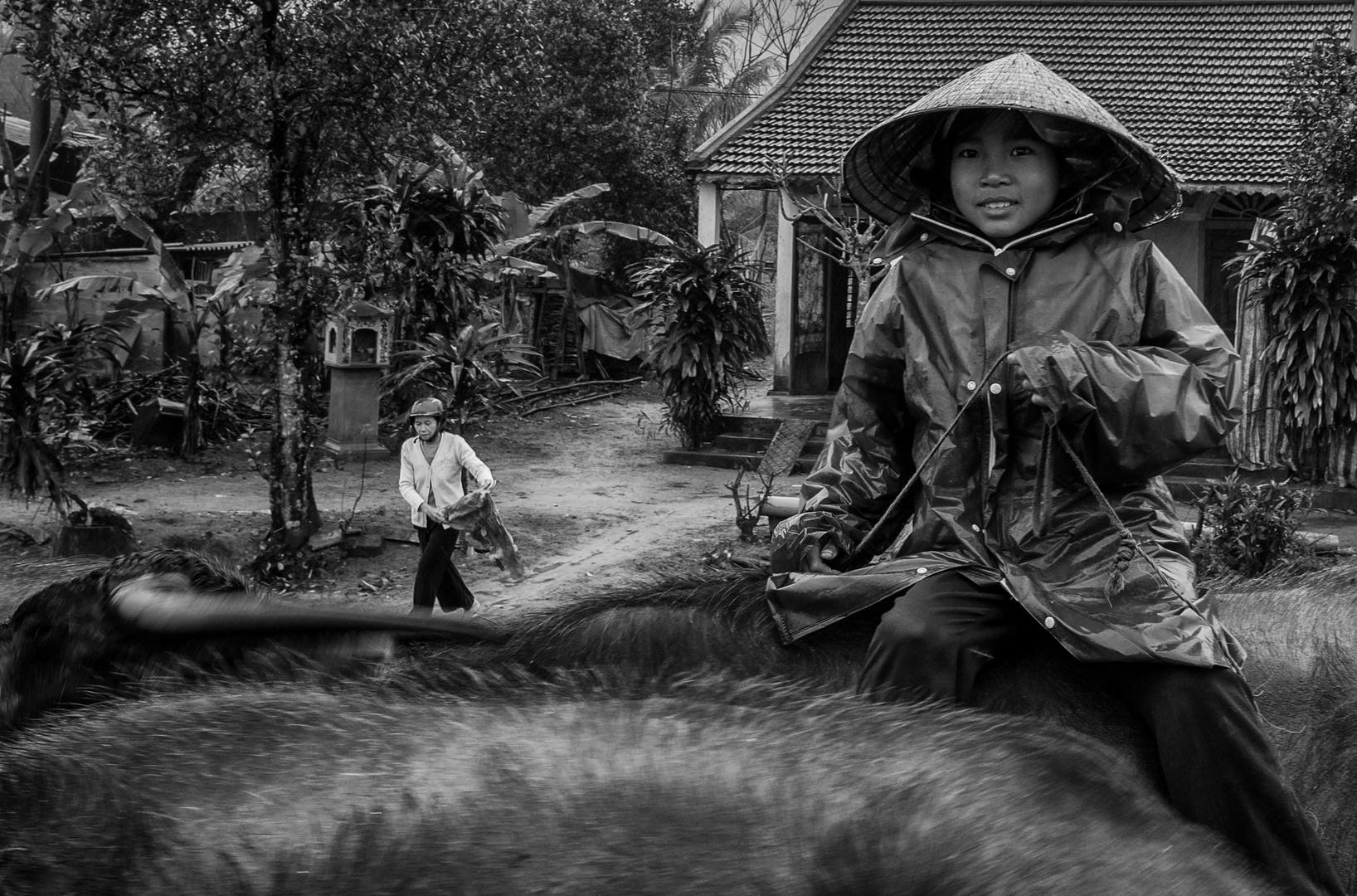 Vietnam No. 4
