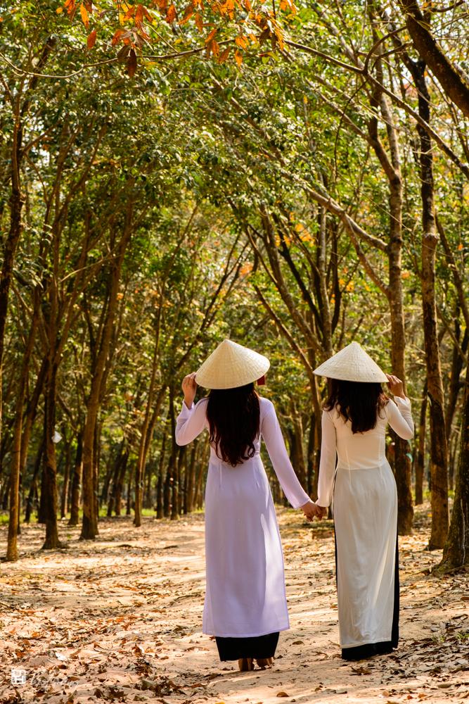 Vietnamese dresses - Ao dai #1