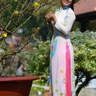 Vietnamese dresses - Ao dai #2
