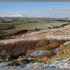 view from Corby's crags towards the cheviot hills A