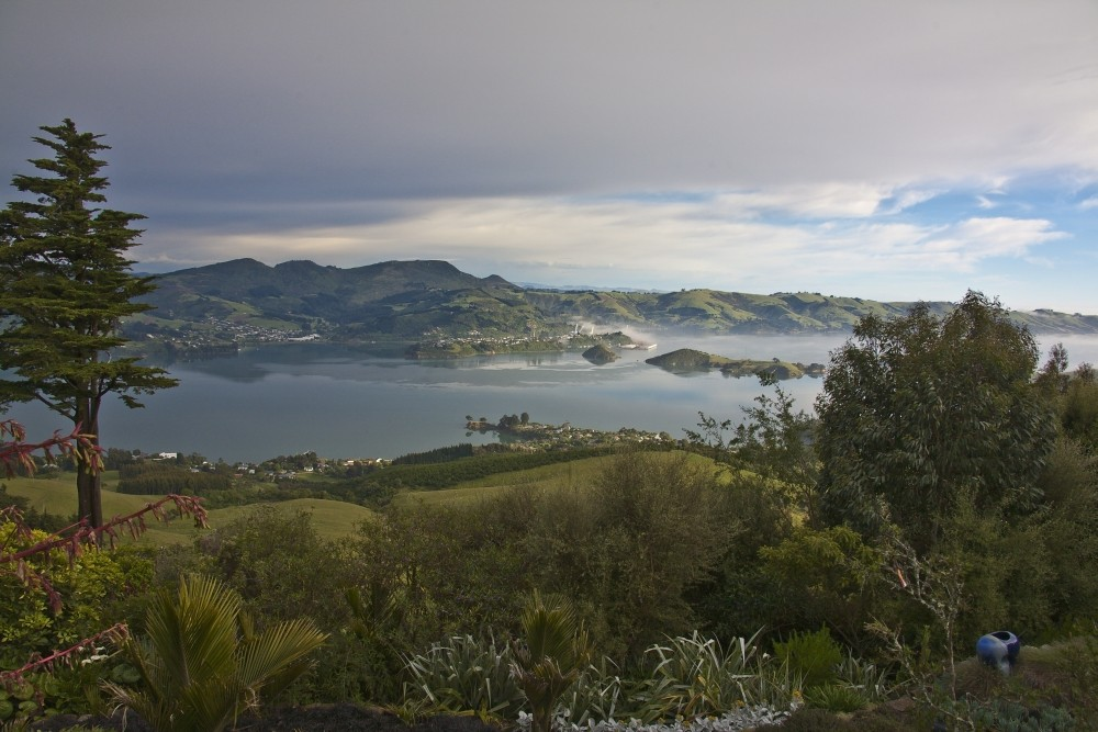 View from Larnach Castle - New Zealand