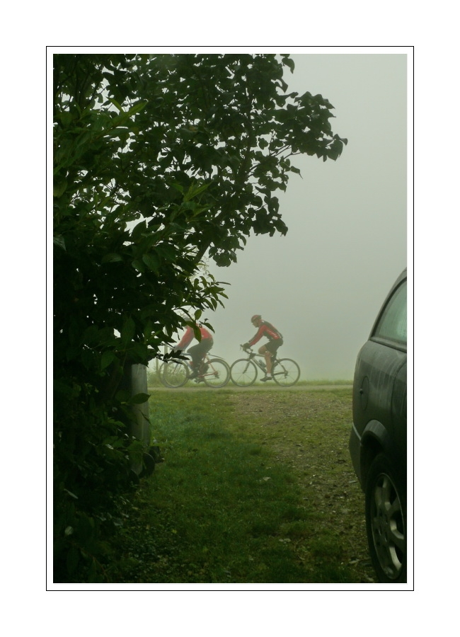 View from our driveway (bicycling in the fog)