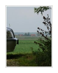 View from our driveway (looking into the distance over Oranjedijke onto polderland)