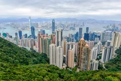 View from the Peak ( Honkong)