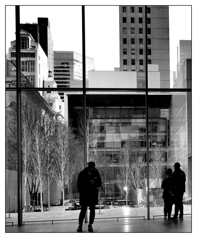 View into the garden at MoMA