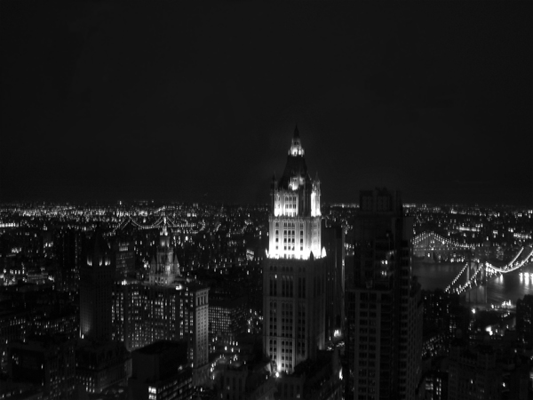 View of Downtown Manhattan at Night