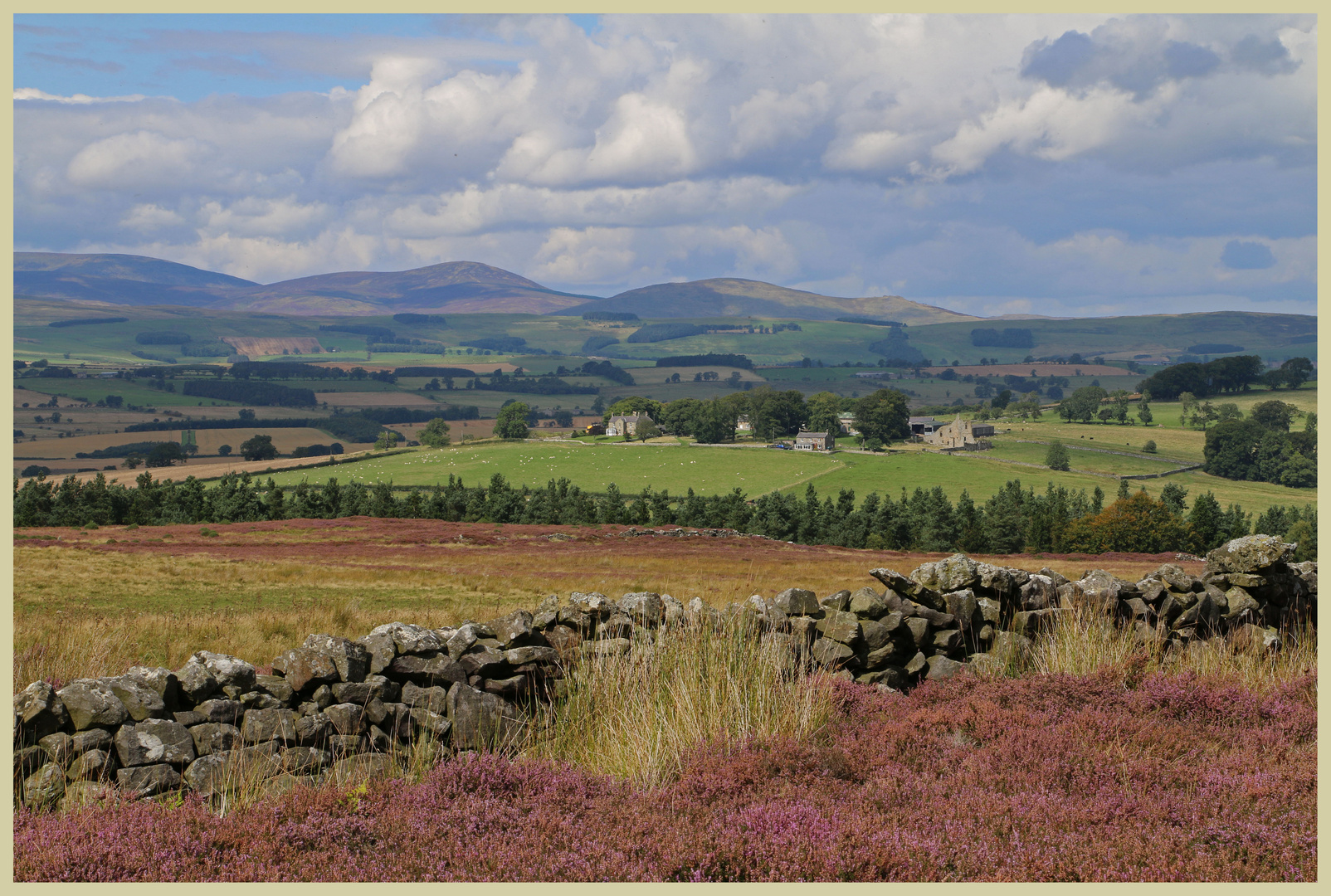 view of the Cheviot hills near cartington in Coquetdale