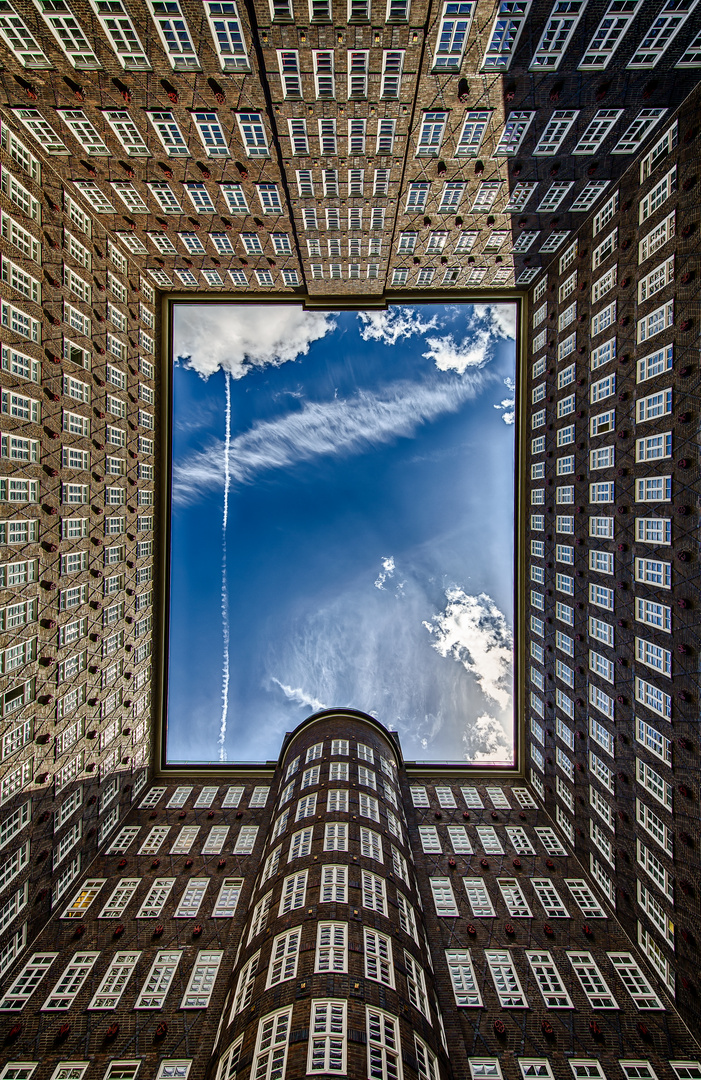 View to the sky