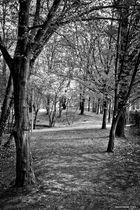 Vigevano, parco Parri