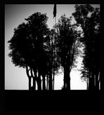 Vilipendio alla bandiera