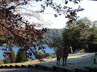 Villa de la Angostura Lago Correntoso