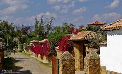 Villa de Leyva - Bougainvillea - Street