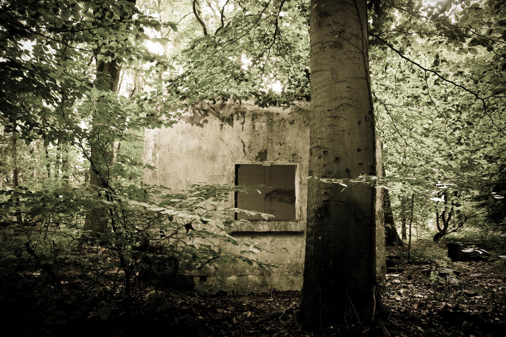 Villa im Wald