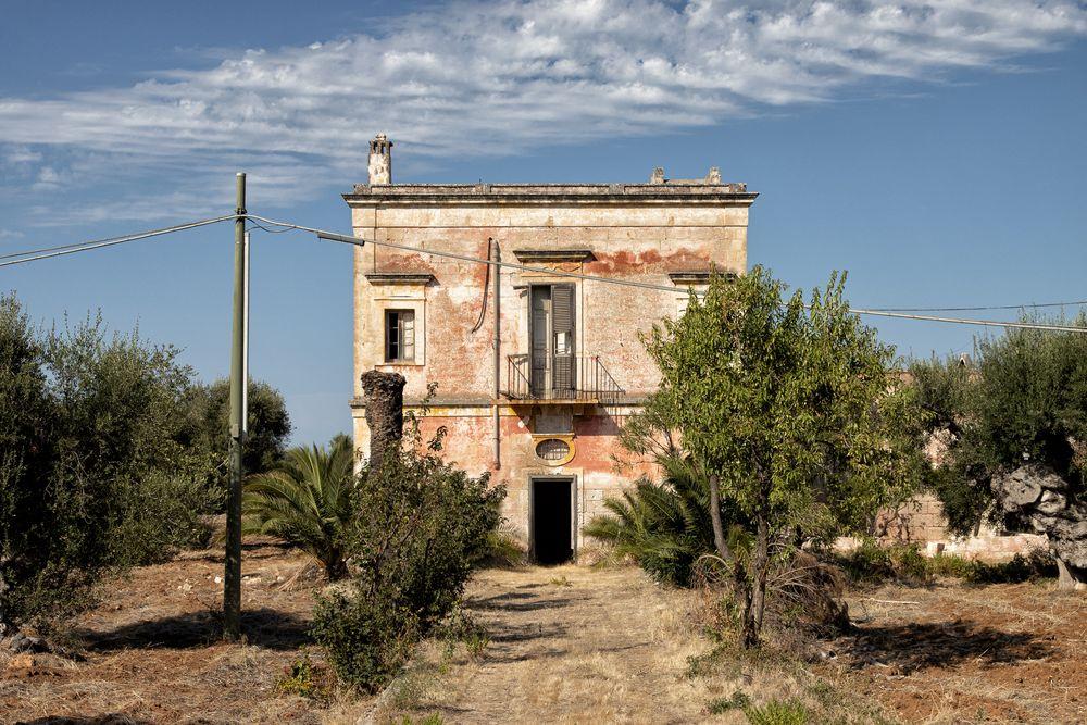 Villa mit Palme...