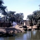 Village at Nile