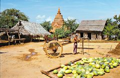 Village parmi les temples de Bagan
