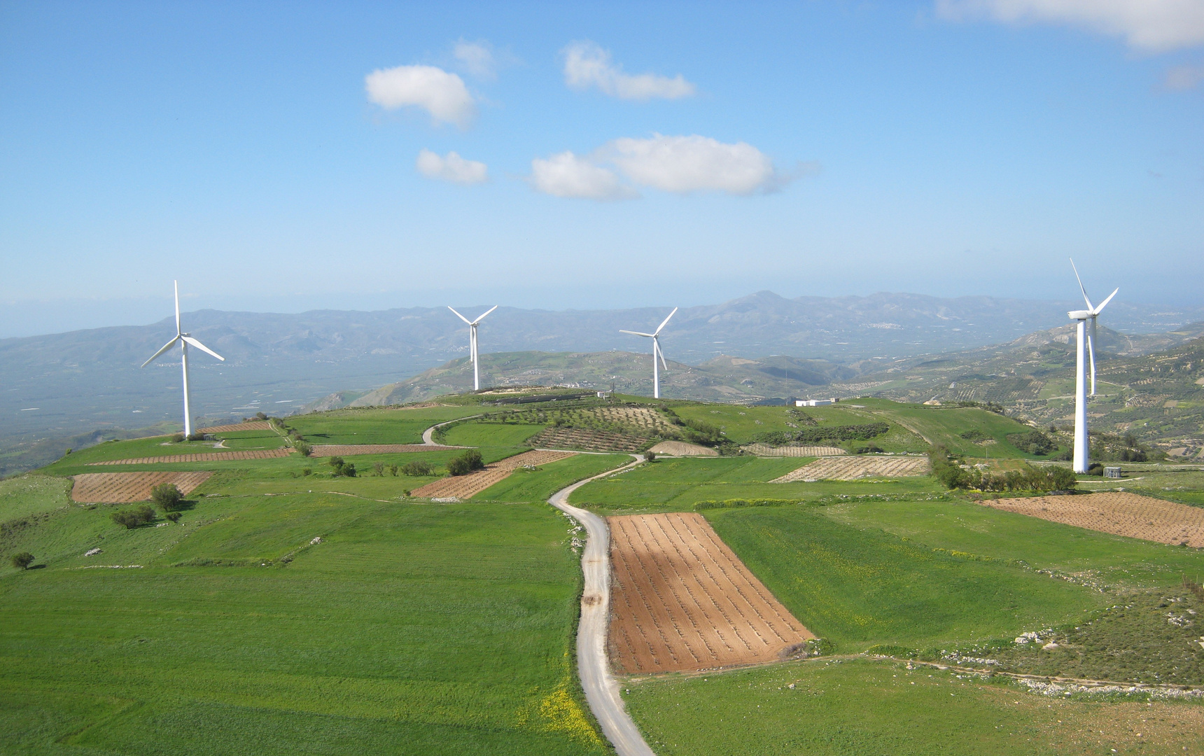 Vineyards & Wind Turbines