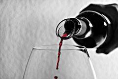vinos tinto