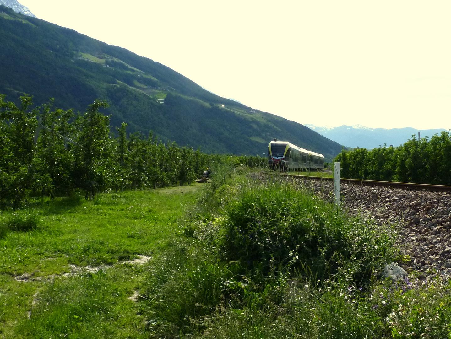 Vinschgau (Italia)...02