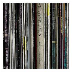 Vinyl custody