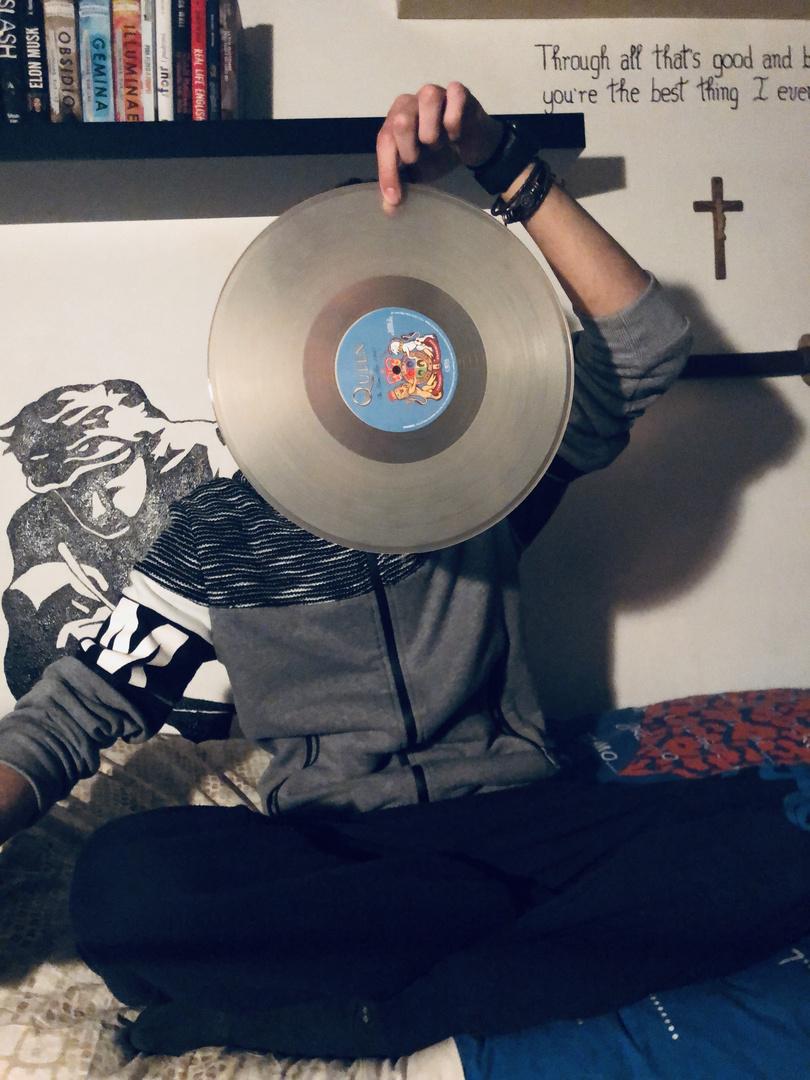Vinyl shield