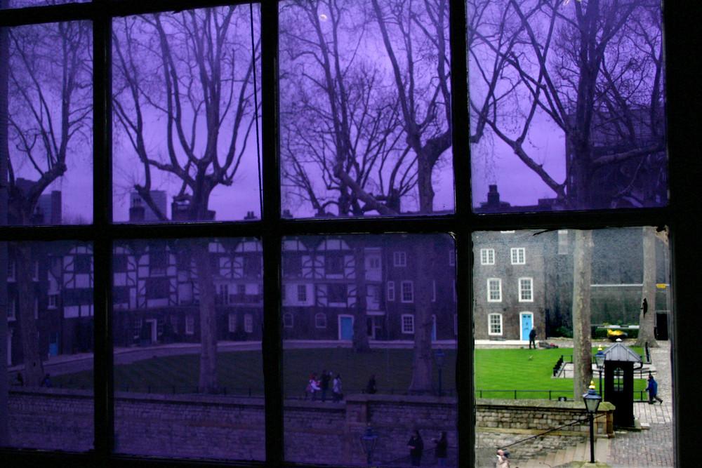 violet window
