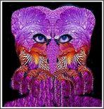 Violettes Blütenwesen nicht so gut drauf