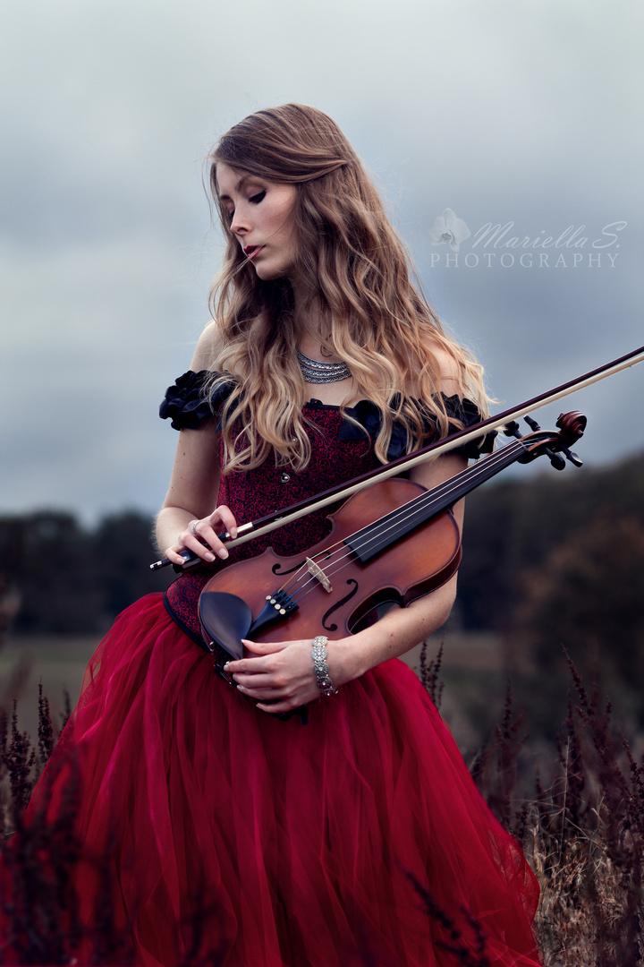 Violin Foto & Bild | szene, fotos, rot Bilder auf