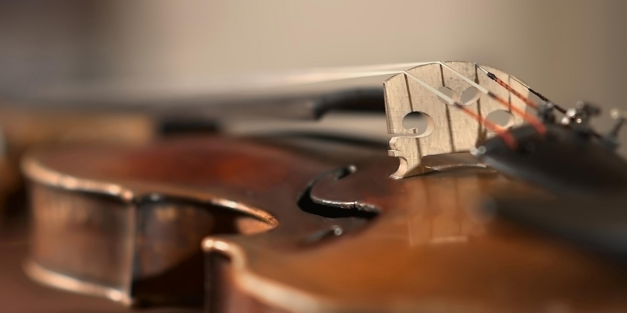 Violine1