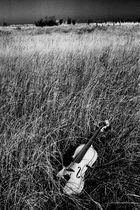 Violon I