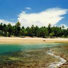 Virgin beach - Praia dos Algodoes - Marau - Bahia - Brazil