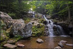 Virginia   Dark Hollow Falls  