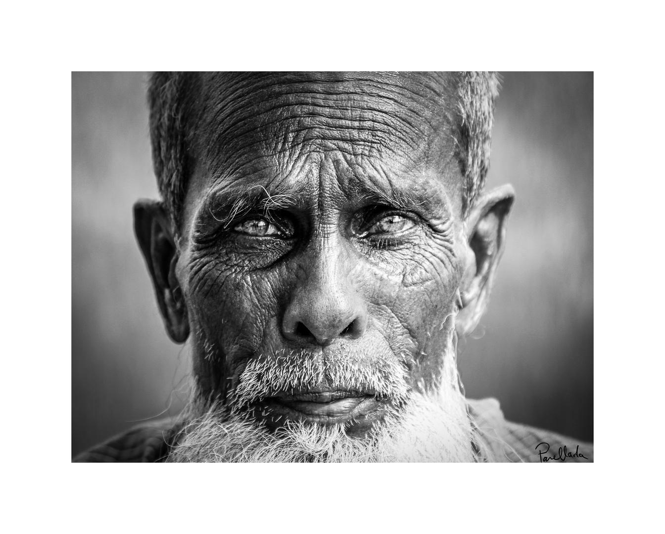 Visage - Bangladesh (2014)
