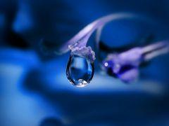 Vision in Blau ...