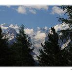 ..visione .dal P.sso Bernina!.