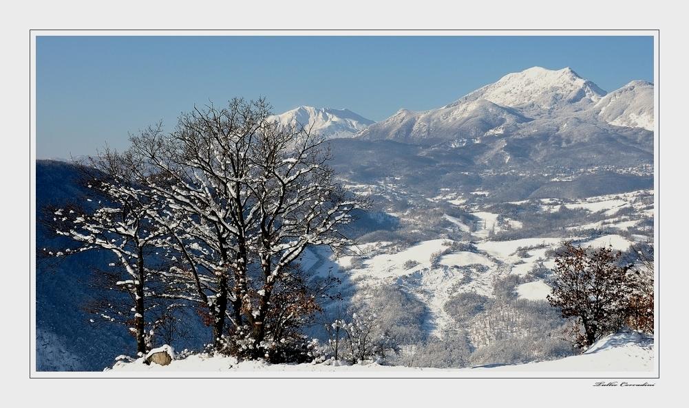..visioni invernali!.. ( 2 )