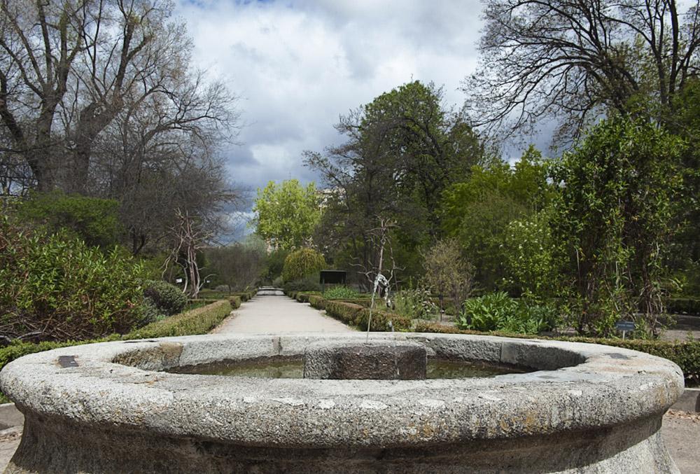 Visita al Jardín Botánico ( Madrid ) - II