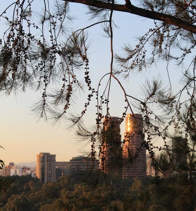 Vistas desde Chapultepec 1