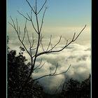 Vita oltre le nuvole